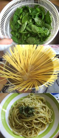 Pasta al pesto: a staple of Italian cooking (better if homemade! An easy recipe with basil + parmesan + pecorino + olive oil + garlic + pine nuts + salt BUON APPETITO! Basil Recipes, Italian Recipes, Pasta Al Pesto, Italian Cooking, Cook At Home, I Love Food, Meal Ideas, Parmesan, Olive Oil