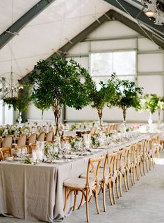 saint-helena-elegant-ranch-wedding-46