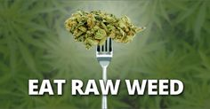 Eating Raw Weed Prevents Bowel Cancer, Fibromyalgia, and Neurodegenerative Diseases via @dailyhealthpost
