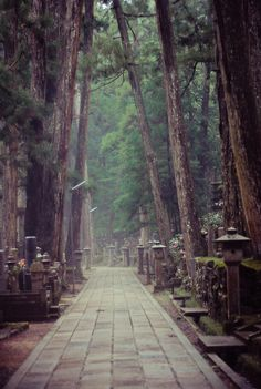 77-27-photo:    Koyasan. One of the most beautiful places in Japan.