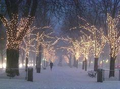 wintertimegirls