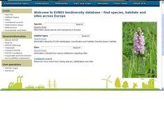 EUNIS es una base de datos de la Agencia Europea del Medio Ambiente que permite una búsqueda cruzada de especies vegetales y animales con sus hábitats y lugares de Europa.