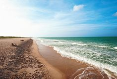 Best Beach: Sebastian Inlet to Vero Beach | Florida Travel + Life Favorite place in the country.