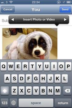 iOS 6 tips, tricks and secrets for iphone, ipad, ipod - good stuff