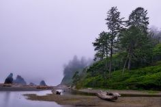 Pacific northwest coast