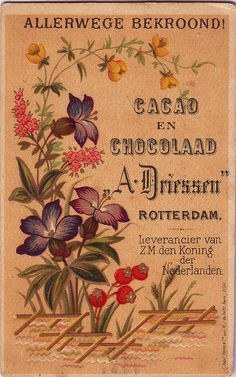 chromo cacao driessen flower spray  1882