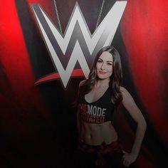 Brie Bella Wwe, Nikki And Brie Bella, Wwe Total Divas, Wwe Divas, Bella Sisters, Surf Tattoo, Wwe Couples, Aj Lee, Becky Lynch