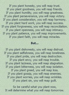 you reap what you sow essay