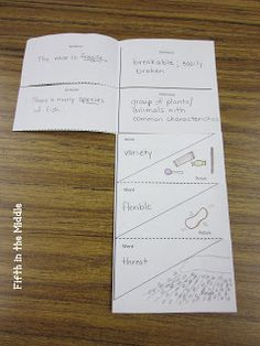 Vocabulary Foldable (links to free printable)  I really like the link that leads to the blog fifth in the middle blog.