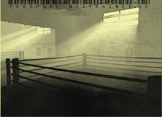 Firmen Sport-Event: Boxtraining der Profis