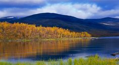Ruska/Autumn colours at Lake Inari, Finland Lappland, Helsinki, Finland Summer, Autumn Leaf Color, Autumn Colours, Lapland Finland, Summer Landscape, Beautiful Landscapes, Places To See