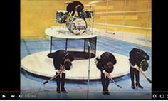 Happy Birthday - The Beatles - YouTube