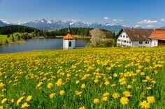 A Alemanha está cheia de regiões pitorescas e encantadoras para os viajantes brasileiros. E o estado independente da Baviera é um destes lugares. Na capital Munique, onde acontece a tradicional Oktoberfest, a modernidade e badalação recebem os visitantes, enquanto que nos lugares mais afastados predomina o clima interiorano, graças ao toque bucólico de suas paisagens. Um dos destaques é a cidade de Füssen, onde fica o Castelo de Neuschwanstein.