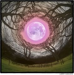 Pink Moon, Sketch Ideas, Visionary Art, Moon Art, Awesome Art, Trippy, Digital Photography, Wonders Of The World, Collage Art
