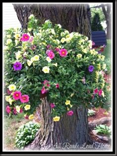 Good idea for an old tree stump, very pretty!