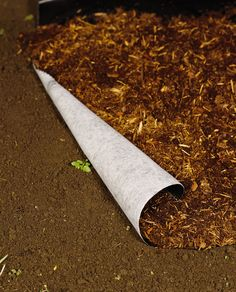 Landscaping: Weed Shield Landscape Fabric | Gardener's Supply