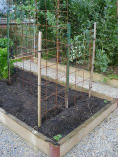 concrete reinforcing mesh for bean/tomato frames