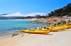 Freycient National Park - Hazards Beach - Kayak Tasmania