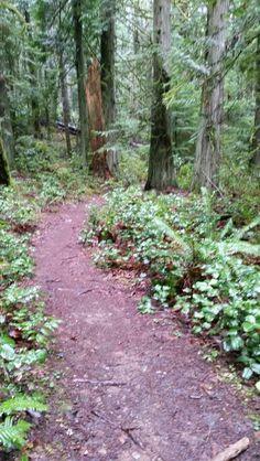 John Dean Provincial Park,  Victoria BC ,Vancouver Island BC Canada