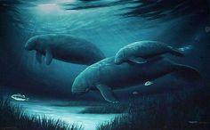Endangered Manatees by ocean life artist #Wyland