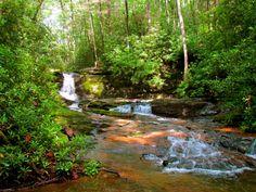 Travel | Georgia | Hikes | Hiking | Easy Hikes | Nature | The Outdoors | Adventure | Exploration | US Hikes