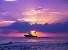 Amazing sunset photo of the Sea Screamer in PCB.  If you look close you can see a dolphin playing in the wake.