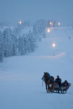 One-horse open sleigh..beautiful :)