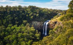 Ebor Falls, Ebor, Australia - This shot is of lower Ebor Falls in the Guy Fawkes River Nature Reserve, New South Wales - Australia. Ebor Falls is a short drive from Dorrigo (30 mins) along the aptly named highway - Waterfall Way. These falls are only a short walk from the car park and very accessible for people of all ages.
