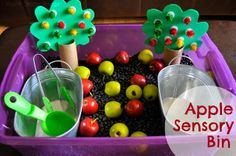 """Love how the pom poms on the tree prop come off since they are Velcro holding them on! Apple Orchard Sensory Bin via I Heart Crafty Things. The apple trees also act as a prop to act out the story """"Ten Red Apples"""" by Pat Hutchins. Preschool Apple Theme, Apple Activities, Fall Preschool, Autumn Activities, Sensory Activities, Preschool Activities, Sensory Play, Preschool Apples, Toddler Preschool"""