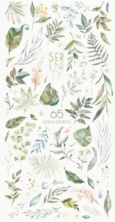 Serenity Floral Elements Watercolor Hand Painted - Mar Floral Elements Watercolor Hand Painted Separate Clipart Gold Leaves Dusty Green W Watercolor Leaves, Floral Watercolor, Watercolor Paintings, Watercolor Ideas, Watercolor Wedding, Watercolor Portraits, Watercolor Landscape, Abstract Paintings, Watercolours