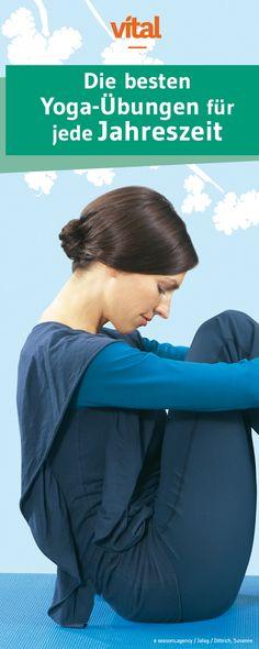 Gut drauf vom Frühling bis zum Winter! Mit dem Jahreszeiten-Yoga von Claudia Geis klappt's. Die auf den Rhythmus der Natur abgestimmten Übungen bringe