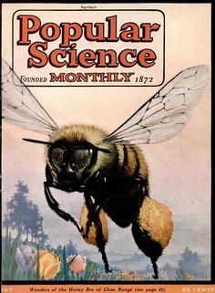 Popular ScienceMay 1924