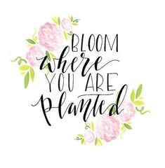 New Quotes Calligraphy Doodles Inspiration Ideas New Quotes, Motivational Quotes, Life Quotes, Inspirational Quotes, Yoga Quotes, Family Quotes, The Words, Flower Quotes Love, Flower Qoutes