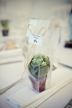 Eco friendly wedding plant favors for Jason