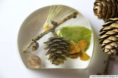 Briefbeschwerer Früchte des Waldes
