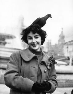 British born leading lady Elizabeth Taylor feeds the pigeons in Trafalgar Square, London. (Photo by Chris Ware/Keystone/Getty Images). Classical Hollywood Cinema, Classic Hollywood, Old Hollywood, Hollywood Stars, Elizabeth Taylor, Lady Elizabeth, Edward Wilding, Catherine Deneuve, Sophia Loren