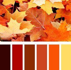 herfst verloop kleurenpalet - Google zoeken