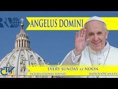 REPLAY TV - Angelus Domini con Papa Francesco domenica 23 febbraio 2014