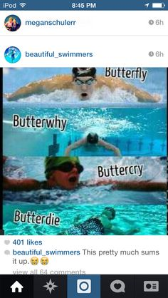 The different states of a 100 butterfly.