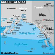 59 Best Gulf of Alaska images