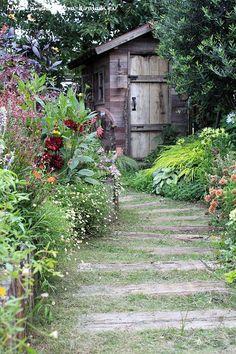 ガーデンの様子 の画像|フローラのガーデニング・園芸作業日記