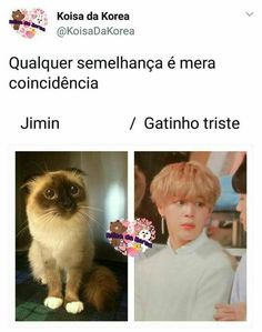 I dont even understand spanish or whatever it is but cuteness is an international language so Bts Memes, Vkook Memes, Bts Meme Faces, Funny Faces, Bts Taehyung, Bts Bangtan Boy, Bts Jimin, Jikook, K Pop