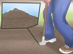 Cómo deshacerte de las moscas en la casa -- vía es.wikiHow.com