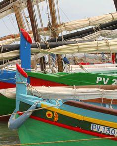 Barques catalanes - Fête de la St Pierre