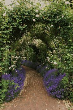 This formal arbor with paved walkway is tranquil and lush.  I love the purple flowers along the pathway edge and white flowers on the arbor. Such a hint of things to come around the bend!  Source:  Karl Gercens on Flickriver