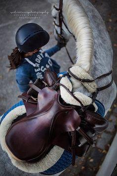 pinterest: lottiehayy Horse