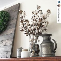 "#Repost /colletteosuna/ Find your Cotton Stems in Collette's Summer Favorites Collection! 25% off with code SPINDLEANDRYE! #Repost /colletteosuna/ Good morning friends! Do you ever want to display your cotton stems in a clear vase, but don't know what to use as a ""filler""? Grab yourself some river rocks, put them in the bottom & tie some twine around the vase for instant farmhouse charm ❤️ Have a great day!"