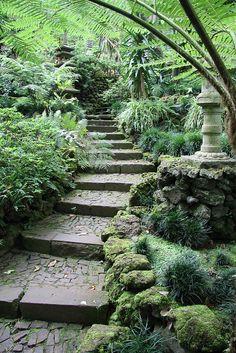Japanese garden at Monte Palace Tropical Gardens
