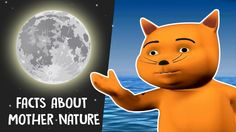 Interesting Facts In Nature   Wonderful Nature   Tell Me About Nature