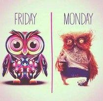 Freitags sehe ich so aus...Montags dito